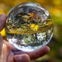 Tres claves y cuatro predicciones económicas para 2017
