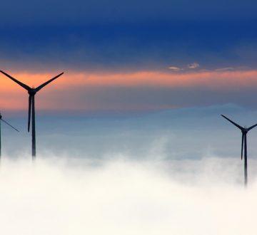 La lucha contra el cambio climático: vasta pero no basta