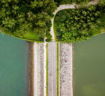 Las empresas ante el COVID y la redefinición de su propósito